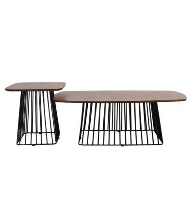 CT391 COFFEE TABLE 1+1